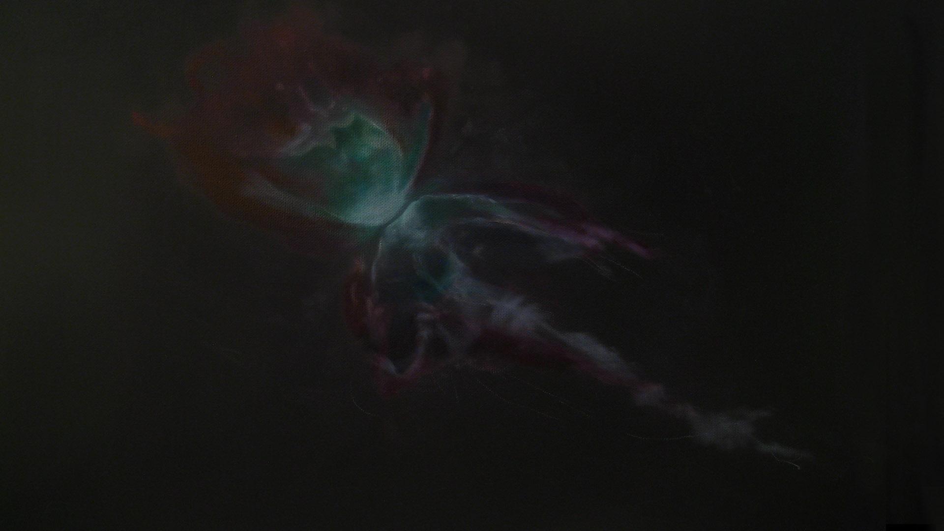 Bug Nebula_1